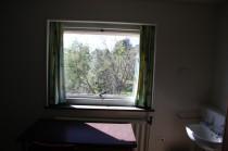 Dearne 13 window view jm