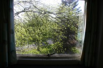 Litherop 12 window view 2 jm