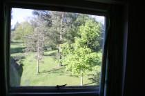 Litherop 13 window view jm