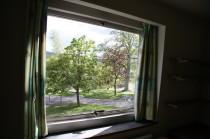 Litherop 6 window view jm