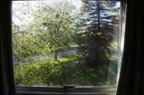 Litherop 7 window view 2 jm