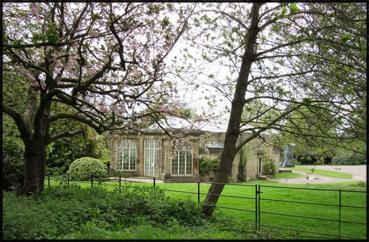 Camellia House - 2015