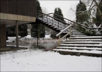 Gymnasium Steps