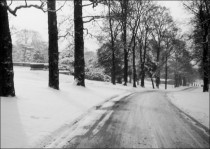 Beaumont Drive