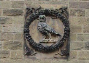 Savile Owl
