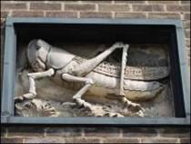 Fascia Panel on the Grasshopper Hostel