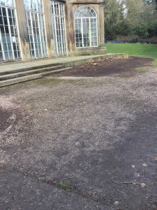Foliage now cleared ready for renovation