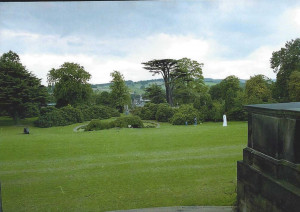 View across the grounds.